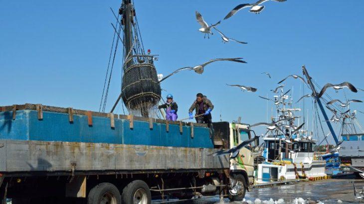 【フードディフェンス】と輸送におけるTAPAの重要性~水産物の安全を守る